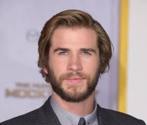 Liam Hemsworth a été à deux doigts de perdre son calme après avoir cru entendre un journaliste l'appeler Chris au salon Comic Con de San Diego
