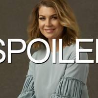 Grey's Anatomy saison 12 : de la baston et un peu d'amour pour le dernier épisode de 2015