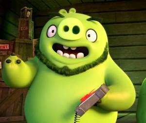 Angry Birds le film : les cochons verts sur une photo