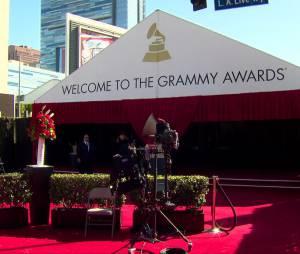 Taylor Swift sur le tapis rouge des Grammy Awards 2016
