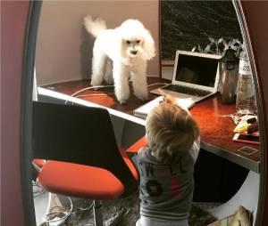 Novak Djokovic : son fils Stefan sur une photo postée sur Instagram