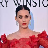 Katy Perry et Taylor Swift bientôt réconciliée... grâce à un hacker ?