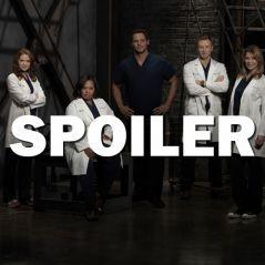 Grey's Anatomy saison 13 : un nouveau bébé à venir ?