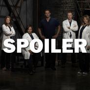Grey's Anatomy saison 13 : Alex bientôt viré ?