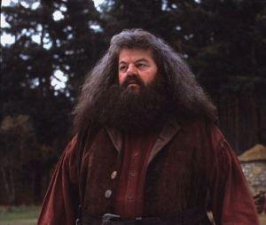 Si Robin Williams aurait pu incarner Hagrid dans Harry Potter, c'est finalement Robbie Coltrane qui a été choisi.