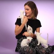 Emma Watson (La Belle et la Bête) : son interview chatons va vous faire doublement craquer 😻