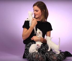 Emma Watson (La Belle et la Bête) : son interview chatons va vous faire doublement craquer
