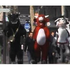 La Vache qui rit ... encore un nouveau Ramdam en vidéo !!
