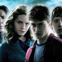 Harry Potter : un personnage culte donne son nom à... une nouvelle guêpe