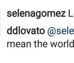 Selena Gomez soutient Demi Lovato sur Instagram : Delena is back !