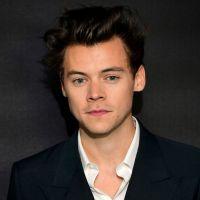 Harry Styles en couple avec le mannequin Sjana Earp ? Les rumeurs relancées