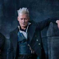 Les Animaux Fantastiques 2 : J.K. Rowling défend le casting de Johnny Depp face aux critiques