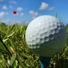 US Open de Golf 2010 ... Le français Gregory Havret finit 2eme devant Tiger Woods