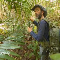 WILD : la séquence du jaguar mise en scène ? Les internautes crient au fake