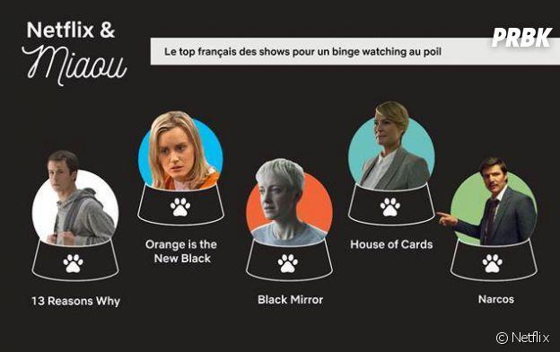 Avec qui faire du binge watching de séries sur Netflix ? Avec ses animaux de compagnie, qui sont des parfaits téléspectateurs selon 55% des personnes interrogées.