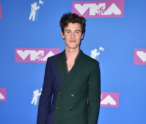 Shawn Mendes sur le red carpet des MTV VMA 2018.