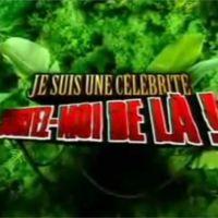 Je suis une célébrité, sortez-moi de là bientôt de retour sur TF1 !
