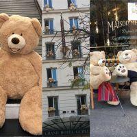 Invasion d'ours en peluche géants à Paris : voilà pourquoi il y a des nounours partout dans le 13ème