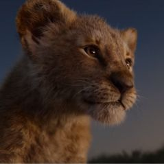 Le Roi Lion : la nouvelle bande-annonce bluffante qui dévoile Timon, Pumbaa, Nala et Scar