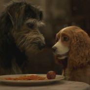 La Belle et le Clochard : la bande-annonce du remake en live-action enfin dévoilée !