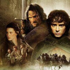 Le Seigneur des Anneaux : un acteur de la saga Le Labyrinthe au casting