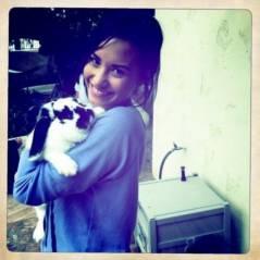 Demi Lovato ... Trop mignonne avec son lapin