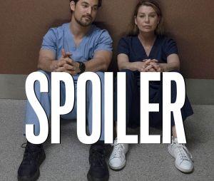 Grey's Anatomy saison 16 : Meredith et Andrew peuvent-ils se remettre en couple ?