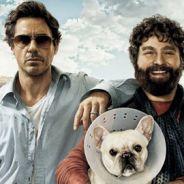 Quand Robert Downey Jr rencontre Zach Galifianakis de Very Bad Trip ... ça donne Date limite ... bande annonce VF