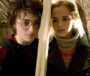 Harry Potter et la Coupe de Feu diffusé en accéléré sur TF1 ? Les fans en colère