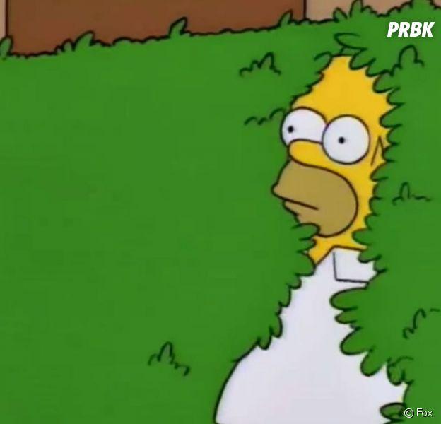 Simpson, The Office, Friends... de quels épisodes de séries sont tirés vos GIFS préférés