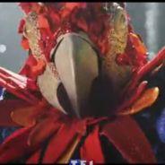 Mask Singer 2 : quelles stars se cachent derrière les costumes ? Les premiers indices et théories
