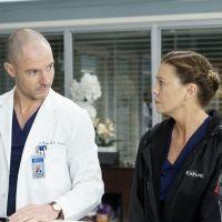 Grey's Anatomy saison 18 : Meredith et Hayes en couple cette année ? C'est possible