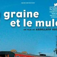 La Graine et le mulet ... le film évènement sur France 2 ce soir