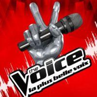 """The Voice : Louis Bertignac retourne sa veste, """"pas d'erreur"""" dans l'élimination de Philippe ! Fail"""