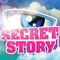 Secret Story 6 : Que sont devenus les anciens candidats ?