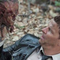 Halloween 2012 : Bones, une compil très gore pour fêter l'évènement ! (VIDEO)