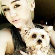 Miley Cyrus : Demi Lovato la soutient après la mort de son chien !