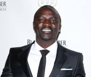 Akon est accusé d'avoir rendu un spectacteur handicapé à vie