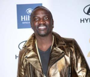 L'homme exige d'Akon une importante somme de dommages et intérêts