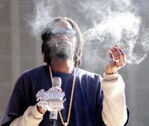 Snoop Dogg, le roi de la ganja