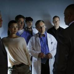 NCIS saison 10 : l'équipe en danger, Gibbs en fugitif dans le final ? (SPOILER)
