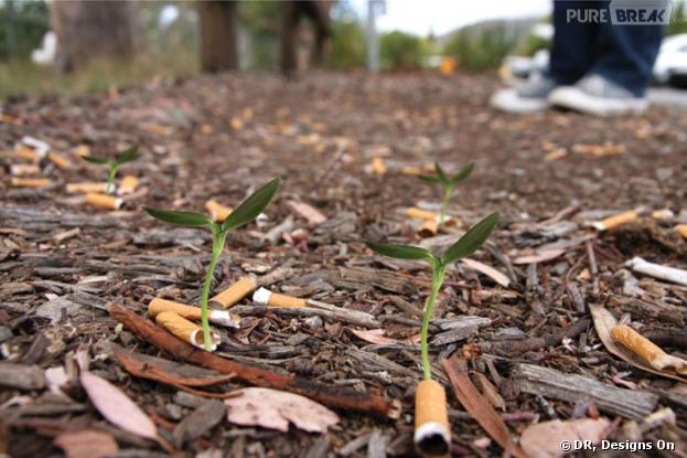 Cigg Seeds, les mégots qui font pousser des plantes