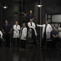 """Grey's Anatomy saison 10, épisode 1 : un retour """"dramatique, émouvant et excitant"""""""
