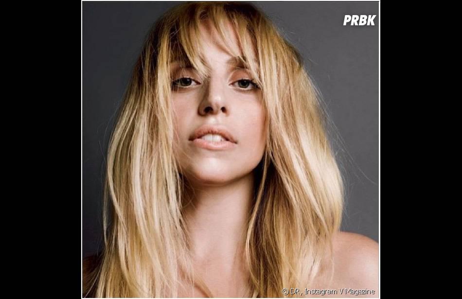 Lady Gaga a pris la pose pour V Magazine, dans les kiosques le 29 août 2013