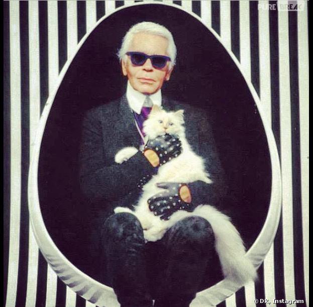 Karl Lagerfeld et son chat Choupette, sur Instagram