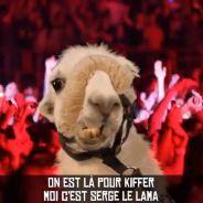 Serge le lama : Lamaoutai, le clip parodique de Philippe Krier