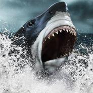[VIDÉO] Le top 10 des animaux les plus gigantesques ayant jamais existé