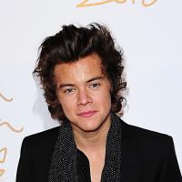Harry Styles (One Direction) en couple avec une chanteuse de 15 ans de plus ?