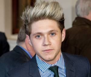 Niall Horan (One Direction) : rencontre avec la Reine d'Angleterre lors d'une réception de la communauté irlandaise au Palais de Buckingham à Londres, le 25 mars 2014