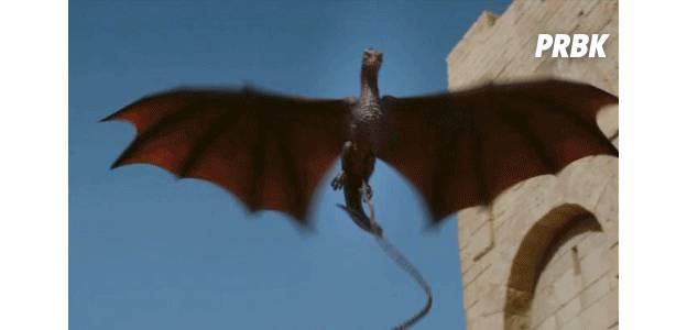 dragon got